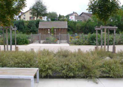 Végétaux et structure bois