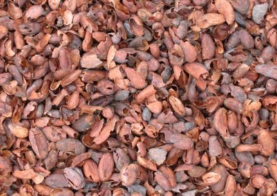 Paillage Cacao