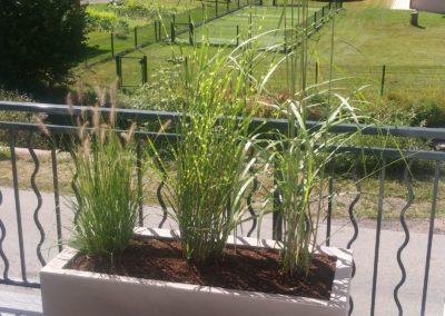 baradel-decortation-plantation-en-pot (3)