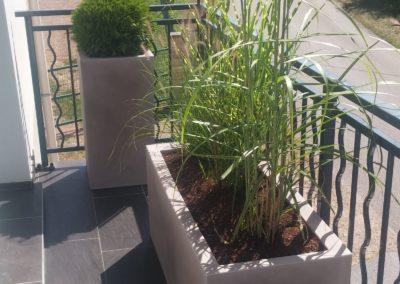 baradel-decortation-plantation-en-pot (5)