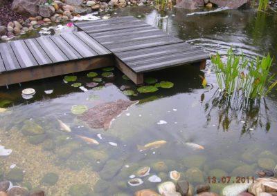 Bassin et ponton