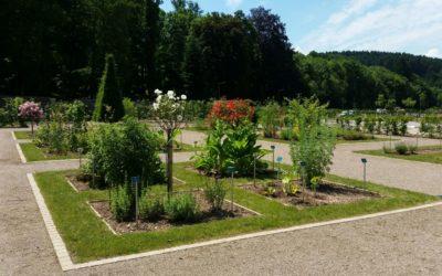 Création paysagère à Saint-Dié