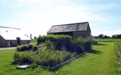 Entretien paysager à Saint-Dié