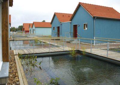 piscine biologique (4)