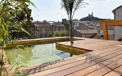 Création de piscine écologique à Saint-Dié