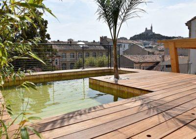 piscine biologique (6)